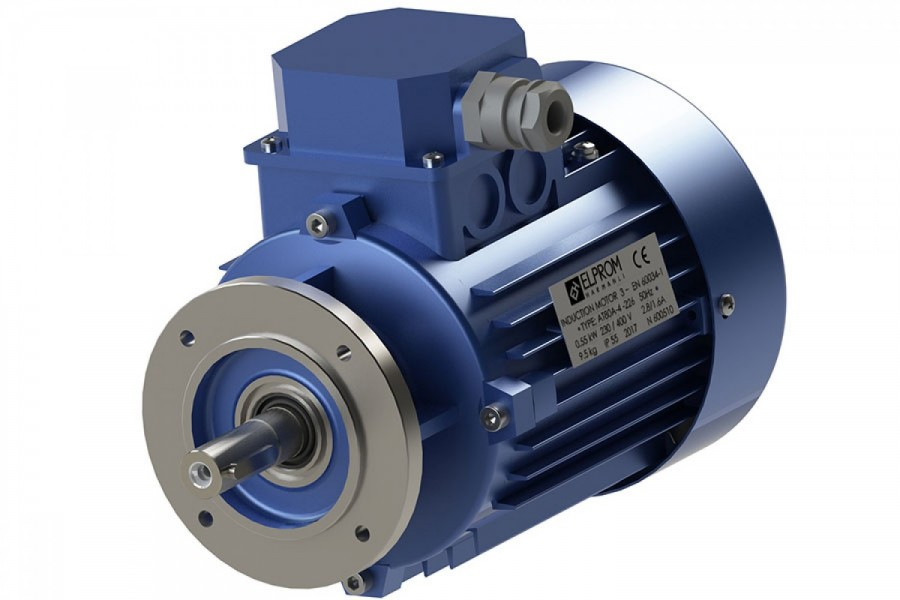 Line start PM motors